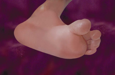 unborn baby's foot at 14 weeks